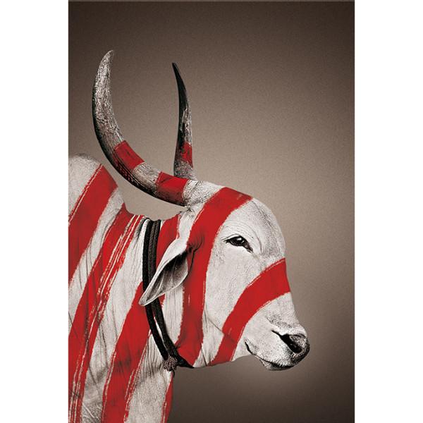 no-mad-india-mascot-nandi-portrait-patta-print