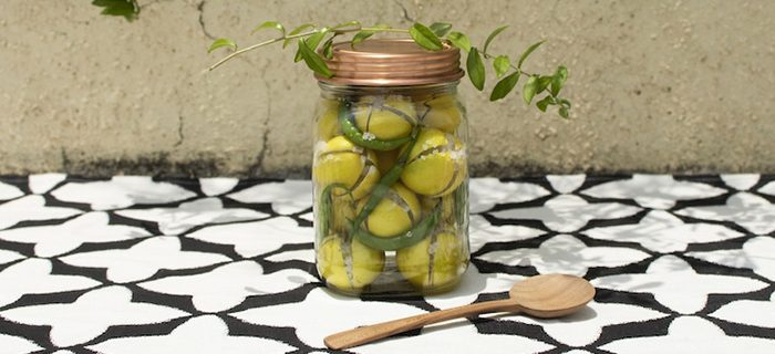 nomad-india-journal-cusine-moroccan-lime-pickle-1