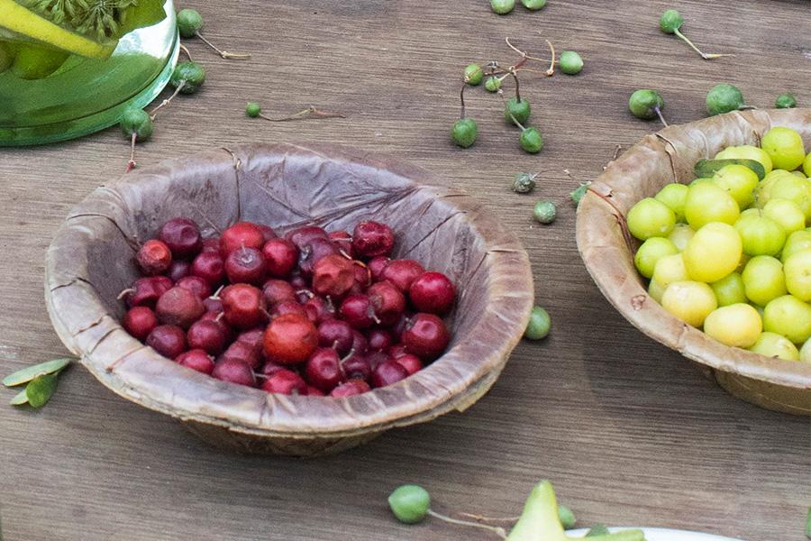 nomad-india-summer-fruits-6