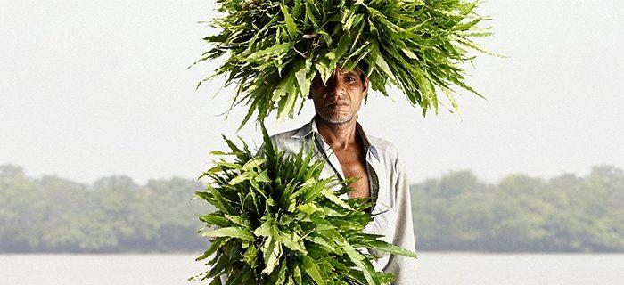 nomad-india-inspiration-kenn-herman-5